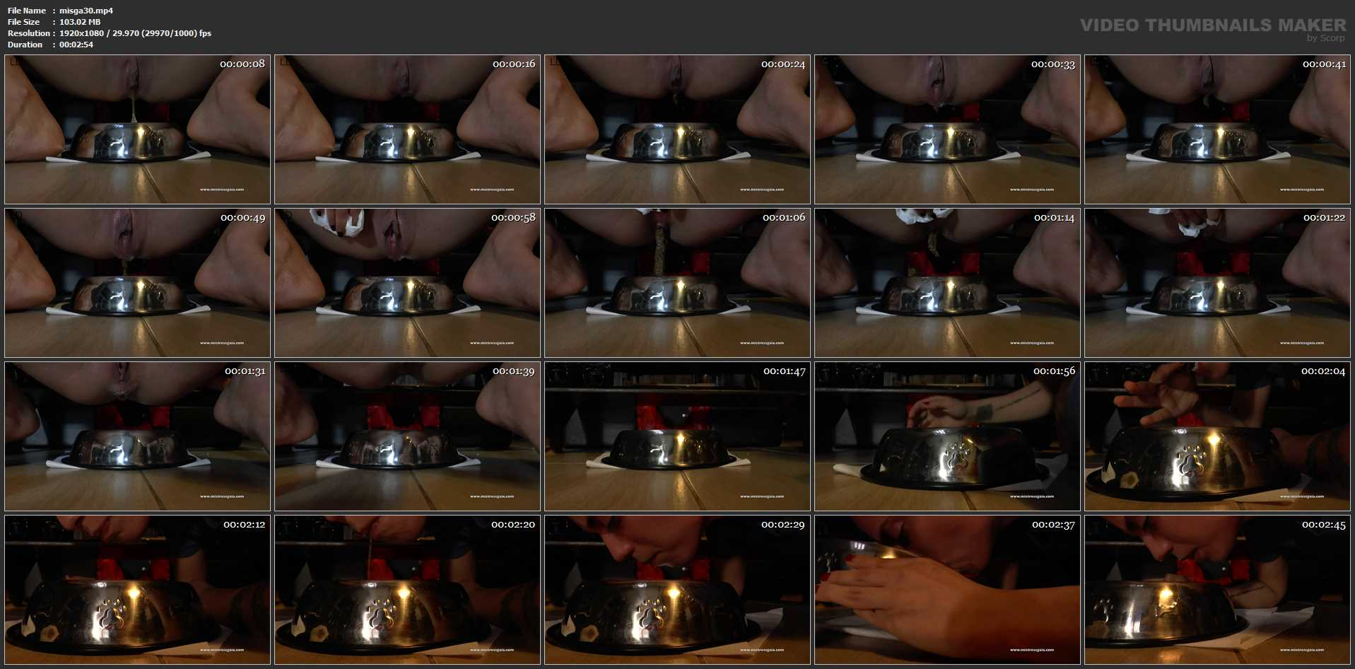 [MISTERSSGAIA / CLIPS4SALE] FAST REPAST. Featuring: Mistress Gaia [FULL HD][1080p][MP4]