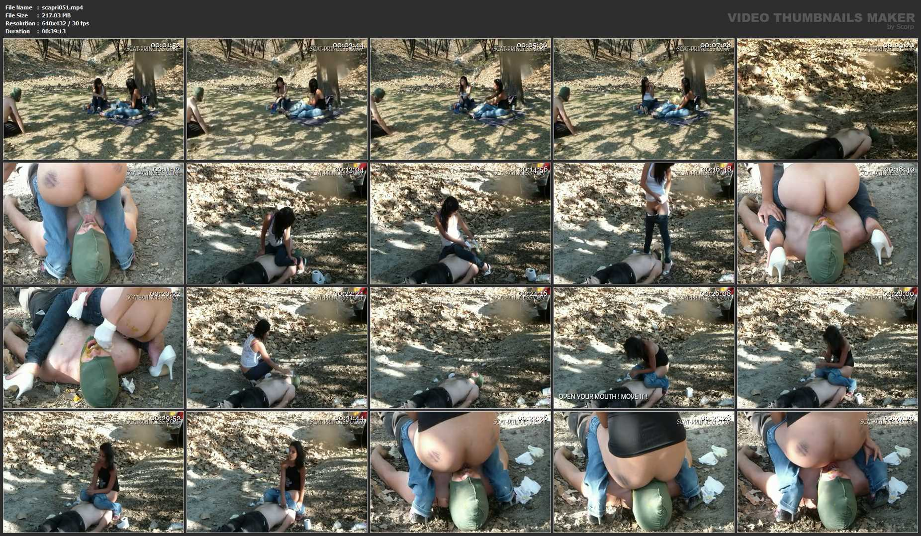 [DOM-PRINCESS / SCAT-PRINCESS] Afternoon Shitting in the Woods Jessy [SD][432p][MP4]
