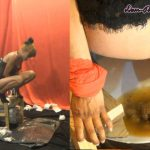 [SCAT-PRINCESS] Dark Toilet Ideas The next Level Part 05 Inka [FULL HD][1080p][WMV]