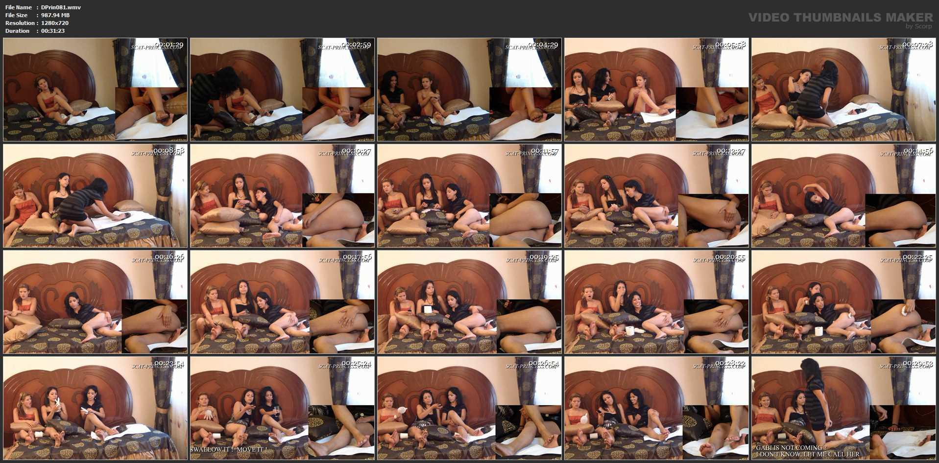 [DOM-PRINCESS] Toilet Slave's Bed Cage Part 1 Diana [HD][720p][WMV]