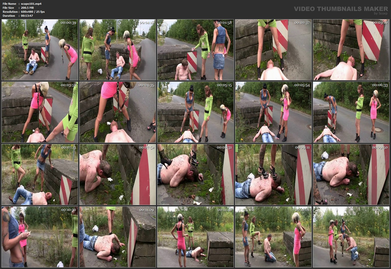 [SCAT FEMDOM MEDLEY] Women piss and shit on the man outdoor [SD][480p][MP4]
