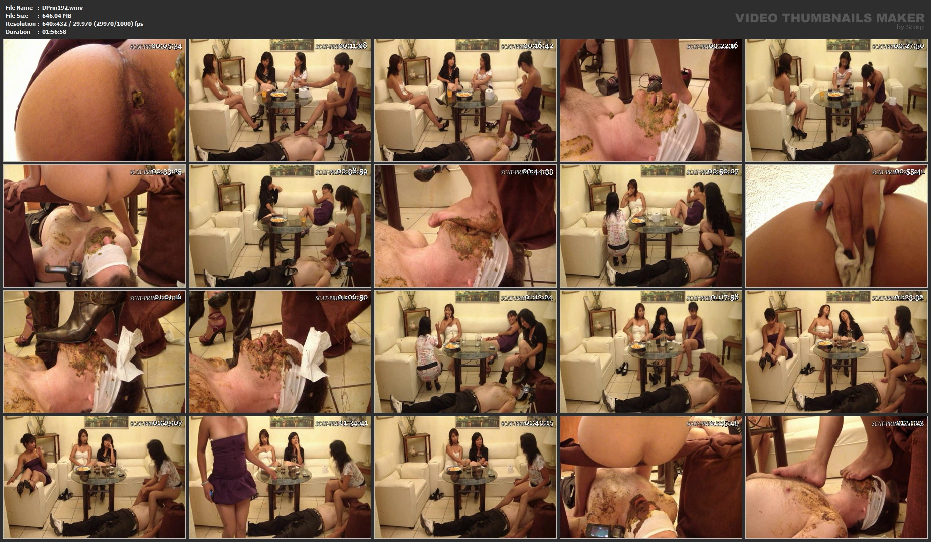 [DOM-PRINCESS] Toiletslaves know what to do SD Subt[4] [SD][432p][WMV]