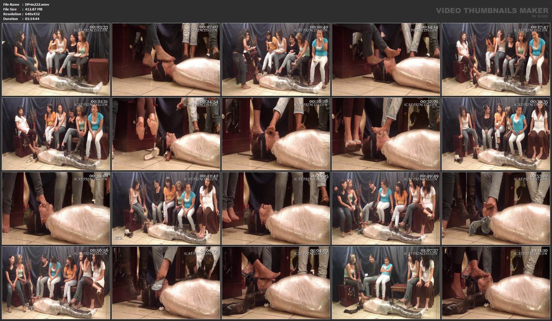 [DOM-PRINCESS] The Feeding and Filling of a Toilet Slave Part 1 [SD][432p][WMV]
