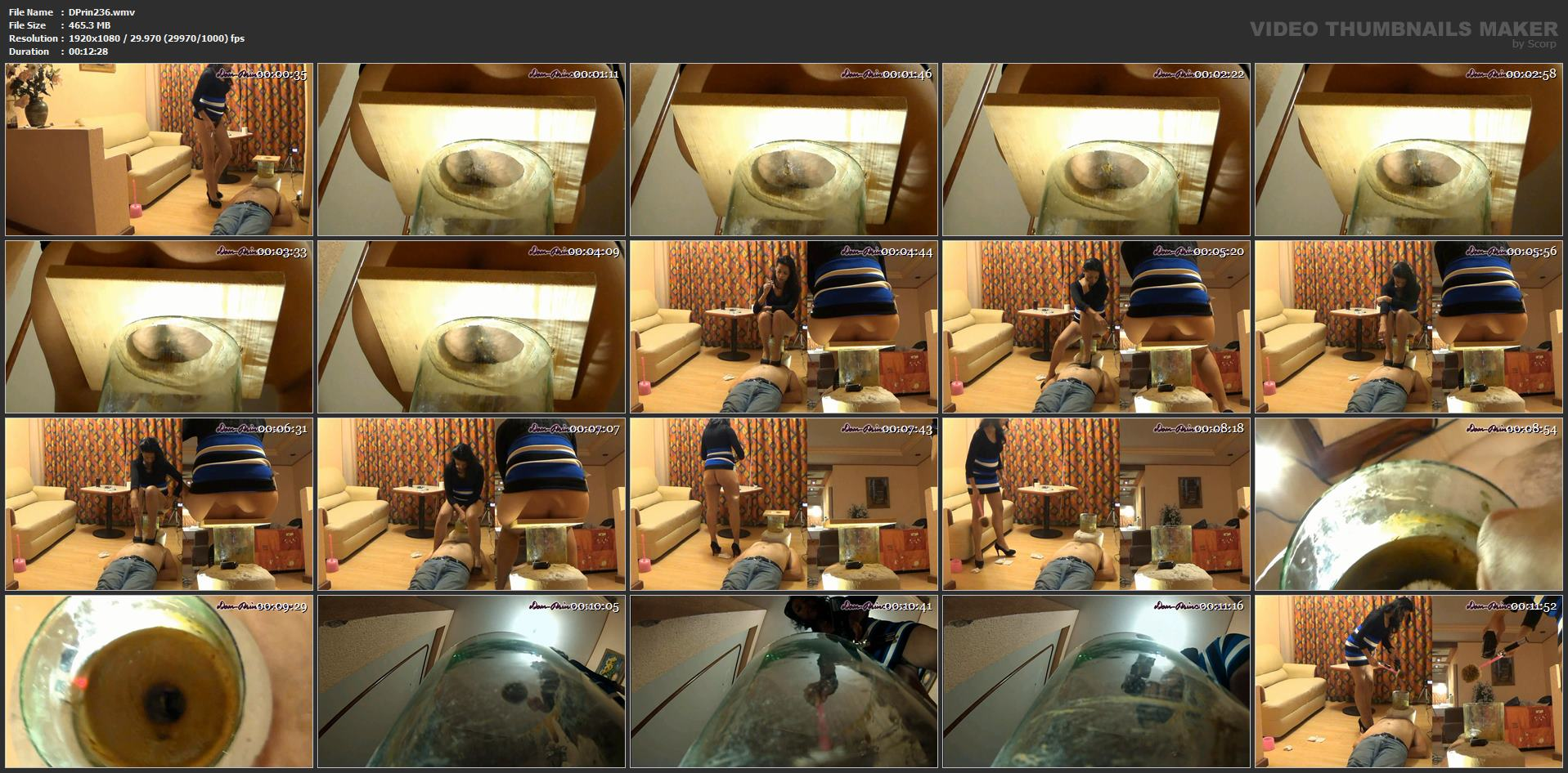 [DOM-PRINCESS] The Poop Collector Part 10 Diana [FULL HD][1080p][WMV]
