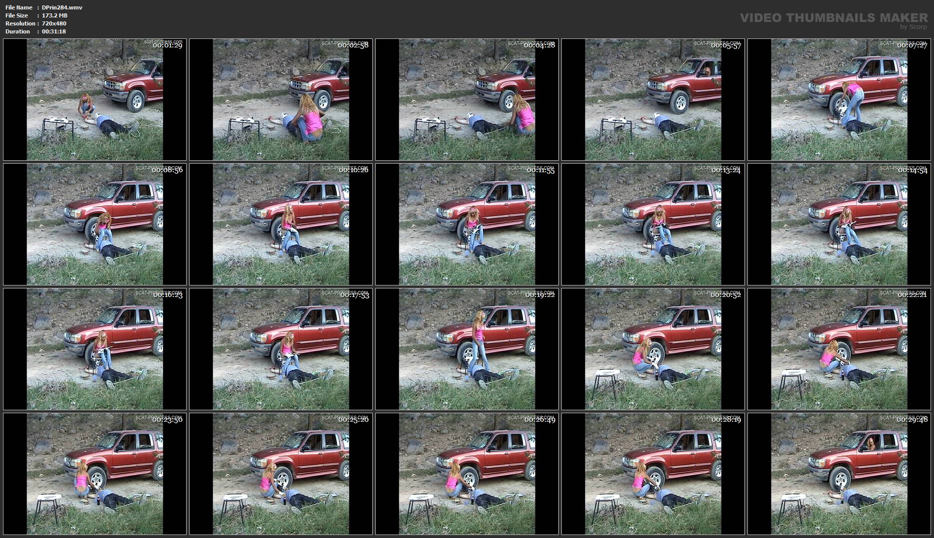 [DOM-PRINCESS] Chrystal Car 2 SONY [SD][480p][WMV]