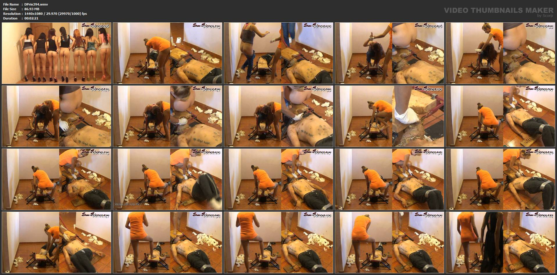 [DOM-PRINCESS] The Raw Tapes, Braking a Man into a Human Toilet Part 6 Karina [FULL HD][1080p][WMV]