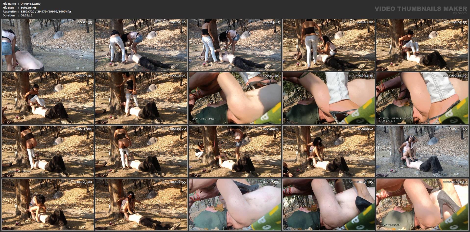 [DOM-PRINCESS] Toiletman takes Toiletshape Subt [HD][720p][WMV]