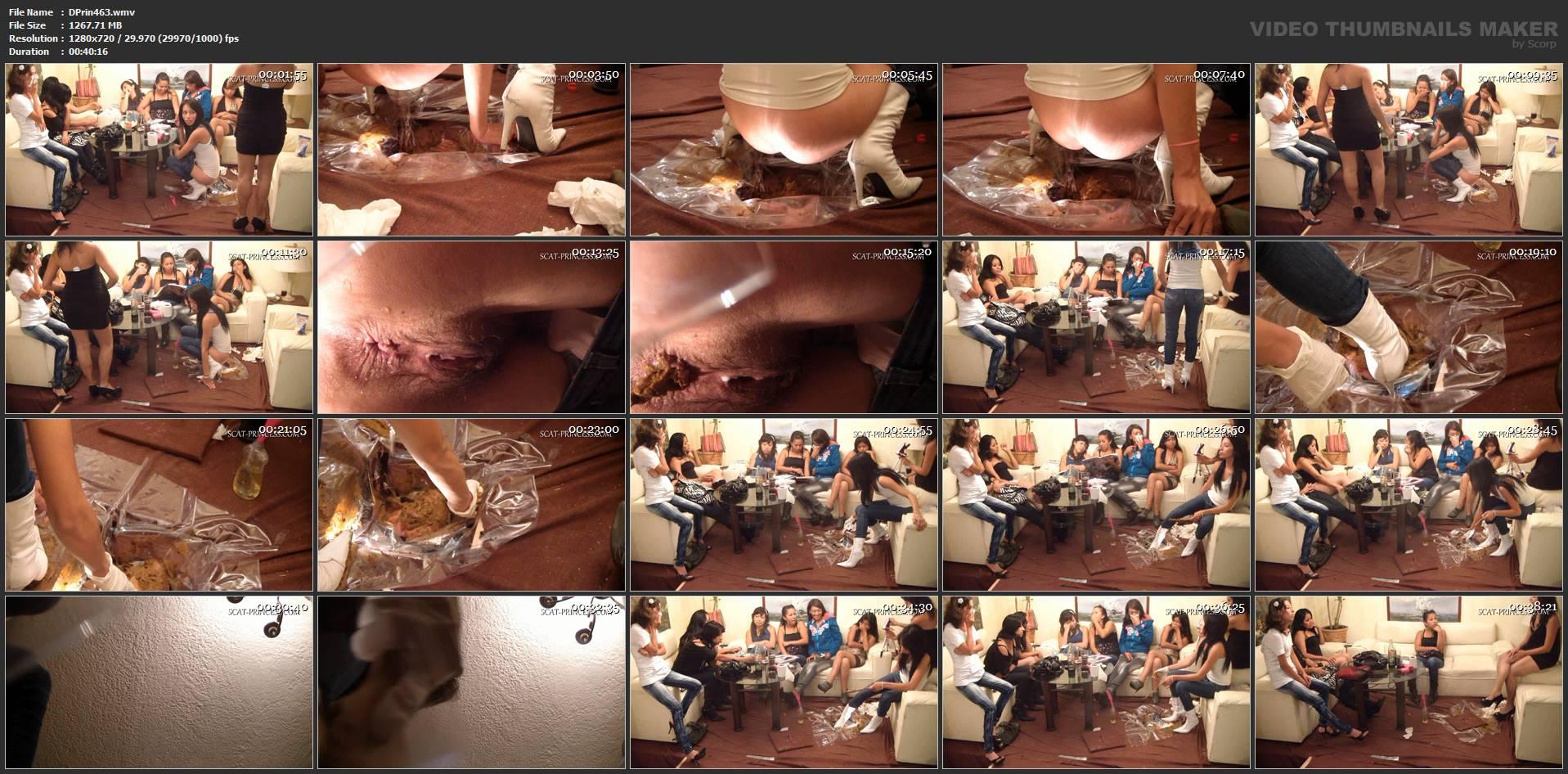 [DOM-PRINCESS] Underground Toilet Slave Part 4 ST [HD][720p][WMV]