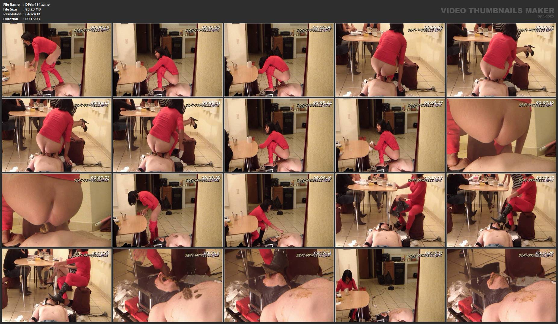[DOM-PRINCESS] Toilet Slave rolling under the Table Part 7 Nataly [SD][432p][WMV]